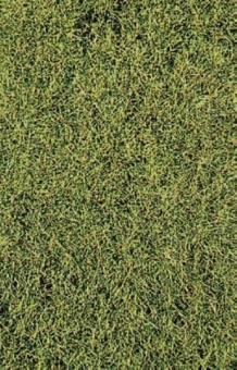 Heki 1574 decovlies Wildgras Savanna 28 x 14 cm für alle Spurweiten Neuware
