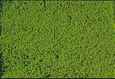 Heki 1610 mikrolaub Belaubungsflocken hellgrün, 200 ml alle Spurweiten Fabrikneu