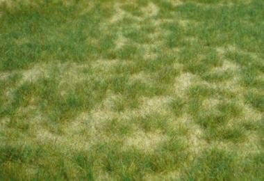Heki 1842 realistic Wildgras Sommergras 45 x 17 cm für alle Spurweiten NEUWARE
