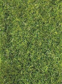 Heki 3369 Grasfaser Wildgras dunkelgrün, 75 g für alle Spurweiten Fabrikneu