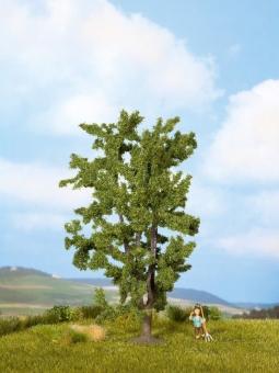 Noch 25850 Akazie mehrstämmig Baum 150 mm hoch in Originalverpackung