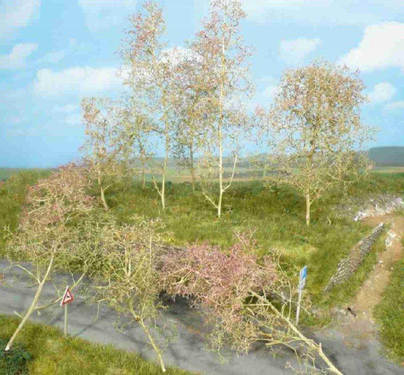 Heki 1638 Bäume Seemoos natur 20 Stück Neuware